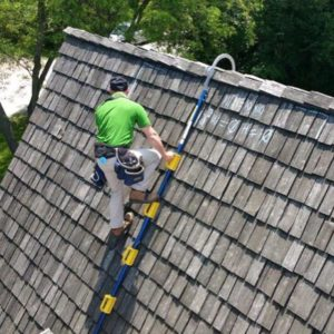 The GOAT Steep Assist Roof Ladder